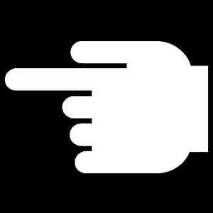 Hand - 2 Finger
