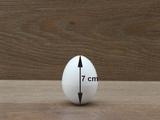 Ei - 7 cm