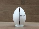 Egg 16 cm 2-pcs
